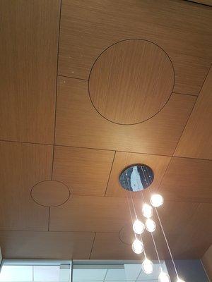 20170421 115913 resized - Ceilings
