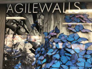 agilewalls1 300x225 - agilewalls1
